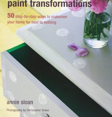 Quick and Easy Paint Transformations Quick and Easy Paint Transformations: 50 step-by-step projects for walls, floors, stairs & furniture Quick and Easy Paint Transformations 0 383x400